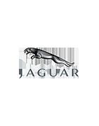 Personalizzato bagagli per cabriolet Jaguar