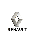 Custom luggages for convertible car Renault